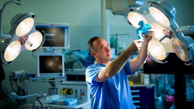 Científicos redefinen un órgano del intestino humano