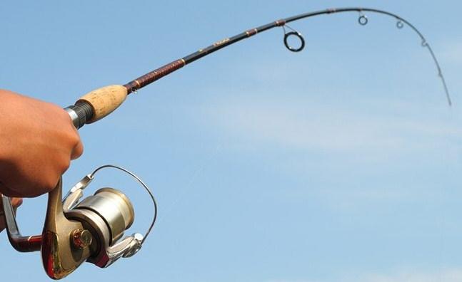 Tổng hợp mồi câu cá sông cái