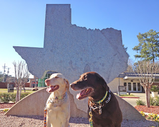 Flying Dogs To Italy : Boomer and Harley at the Texas Welcome Center on I-20