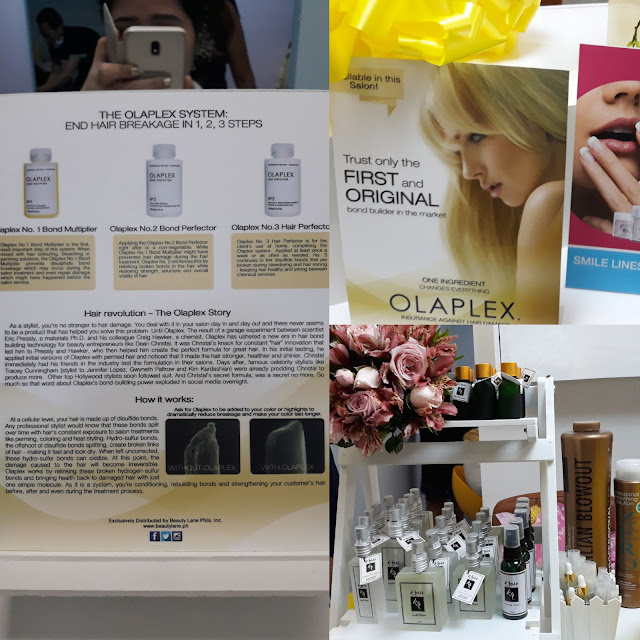 Olaplex - this is the first time that I have heard of this, but it's well-loved by Hollywood celebrities. This hair bond building technology ends hair breakage and makes color last longer. It's a 3 step system which improves hair strength, structure and vitality. Rainbow Dream Spa stylists are Olaplex, Brazilian and Elgon certified!