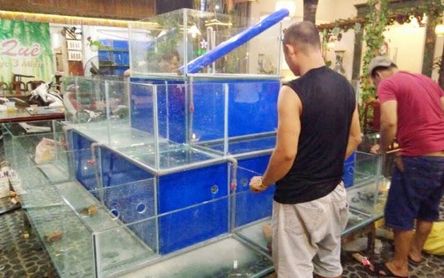 Những vấn đề cần biết khi thi công dàn hồ hải sản
