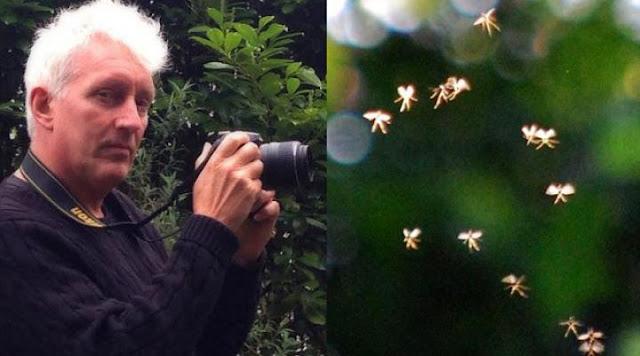 Professor universitário afirma ter fotografado fadas reais