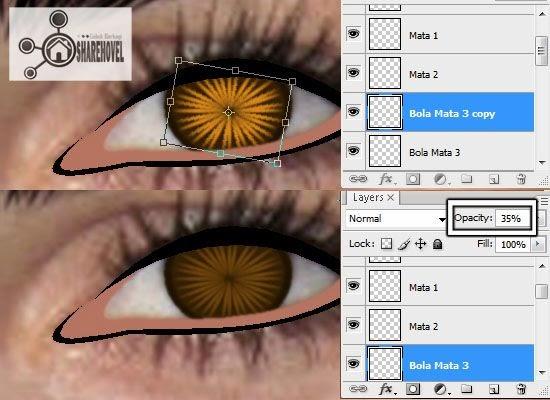 membuat vector bola mata menggunakan photoshop - tutorial membuat vector di photoshop - membuat foto menjadi kartun dengan photoshop
