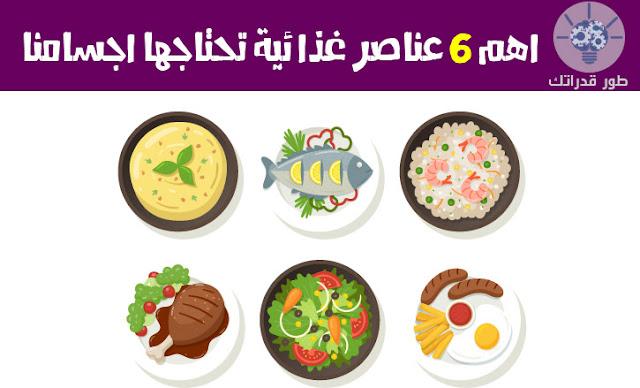 اهم 6 عناصر غذائية تحتاجها اجسامنا
