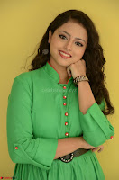Geethanjali in Green Dress at Mixture Potlam Movie Pressmeet March 2017 002.JPG