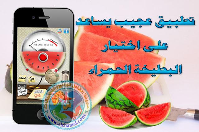 تطبيق عجيب يساعد على اختيار البطيخة الحمراء