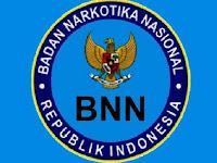 Pendaftaran CPNS BNN 2017/2018