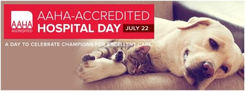 AAHA Accredited Hospital Day logo with dog and kitten