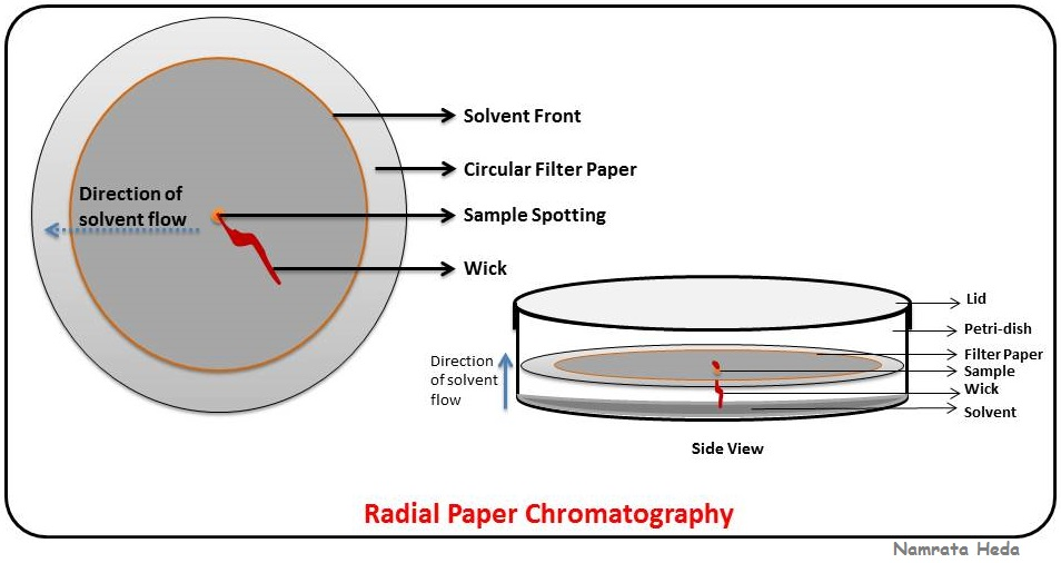 separation of cations by paper chromatography