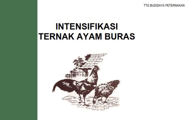 Buku Peternakan Intensifikasi Ternak Ayam Buras