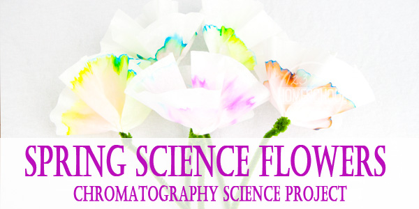 Chromatography Science Project