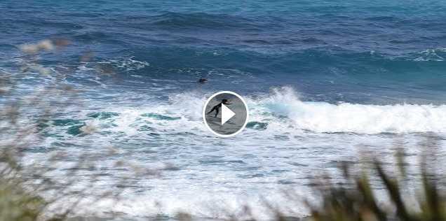 Mediterráneo un mar de oportunidades