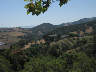 View of rolling hills and vineyards from Arnerich Road, Los Gatos, California