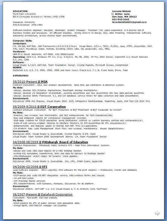 resume visual basic 6 developer