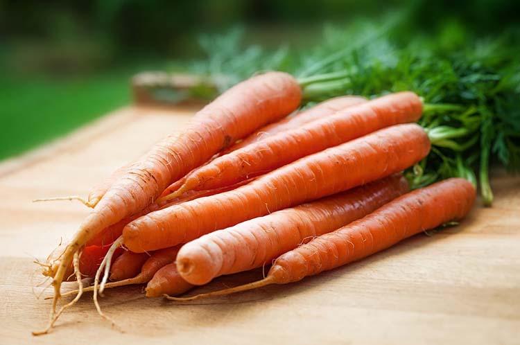 Khasiat Herbal Sayuran Wortel Untuk Kesehatan
