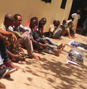cow rustlers arrested nasarawa
