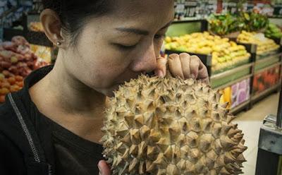 Cara Memilih Buah Durian Dan Melon Dengan Tingkat Kematangan Sempurna