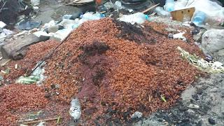Plum, Stones, Discarded,Yambol,