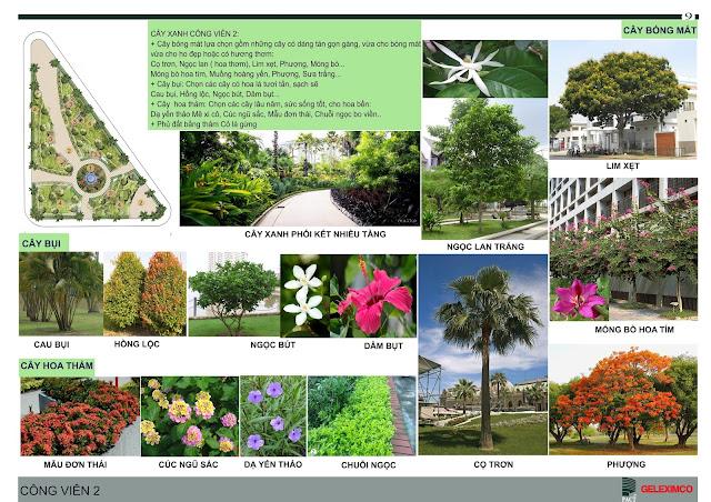 Thiết kế công viên 2 với các loại cây, hoa được trồng