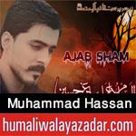 http://www.humaliwalayazadar.com/2016/09/muhammad-hassan-nohay-2017.html