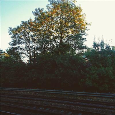 Nature at train station