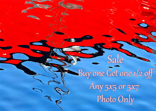 https://www.etsy.com/listing/128024428/bogo-half-off-5x5-or-5x7-photograph-buy?ref=shop_home_active_2