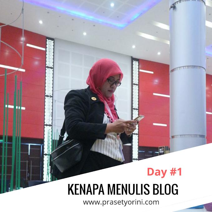 Awalnya Menulis Blog Untuk Hobi