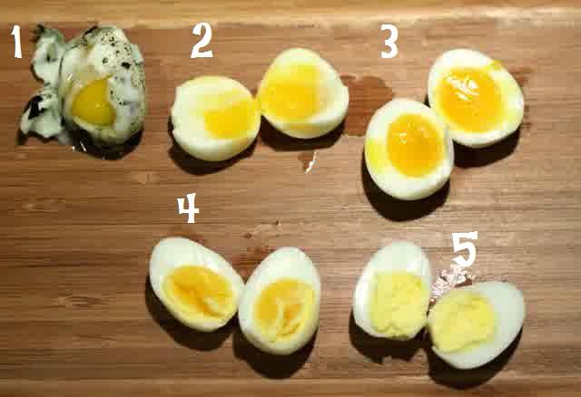 Cara Merebus Telur Puyuh yang Sempurna