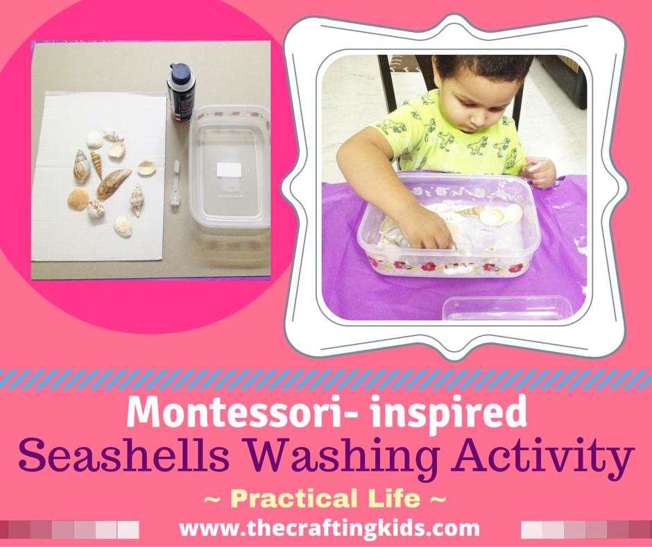 Oceans Themed Seashells Washing Activity The Crafting Kids