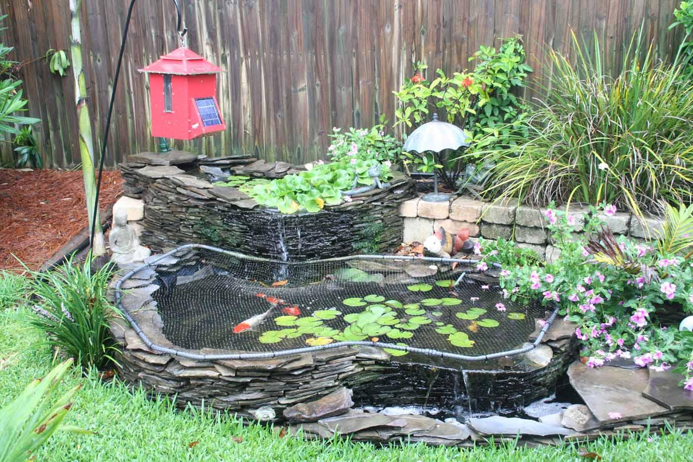 Koi Pond | Garden Landscape Design