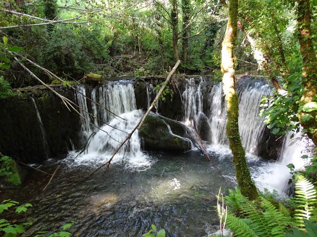 Cascada de San Pedro en O Incio