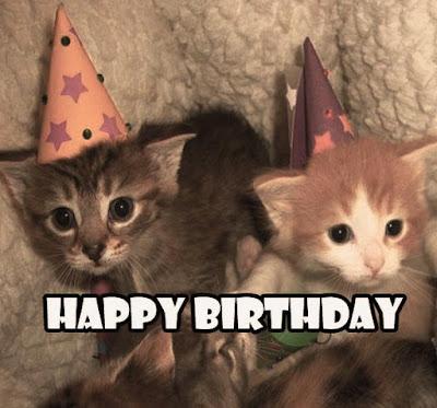 Sister Birthday Memes