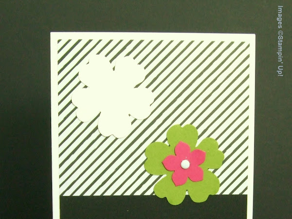 Super Simple Speedy Cards #8 - Go Wild Monochrome Cards with a Pop of Colour