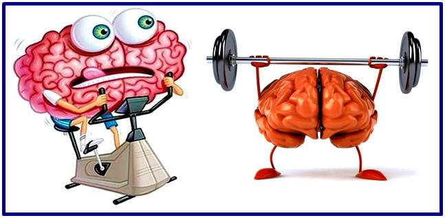 Best exercises to improve your memory and brain functions