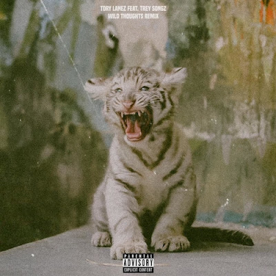 Tory Lanez Ft. Trey Songz - Wild Thoughts (FULL) (Remix) (RB) [Casa Da Musika]