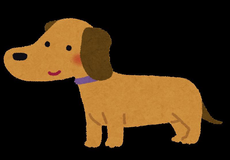 ミニチュアダックスフントのイラスト犬 かわいいフリー素材集