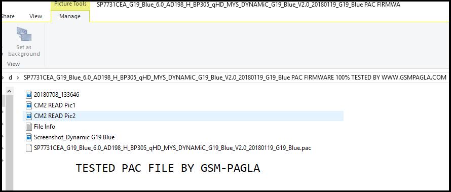 Dynamic G19 Blue Pac Firmware file