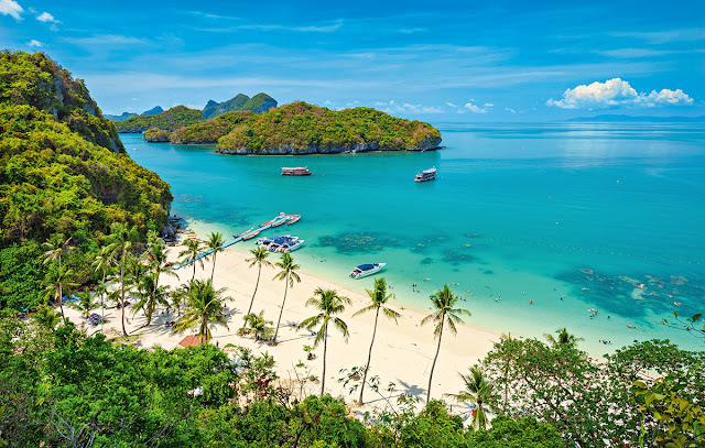 palmy, plaża, wakacje marzeń