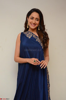 Pragya Jaiswal in beautiful Blue Gown Spicy Latest Pics February 2017 056.JPG