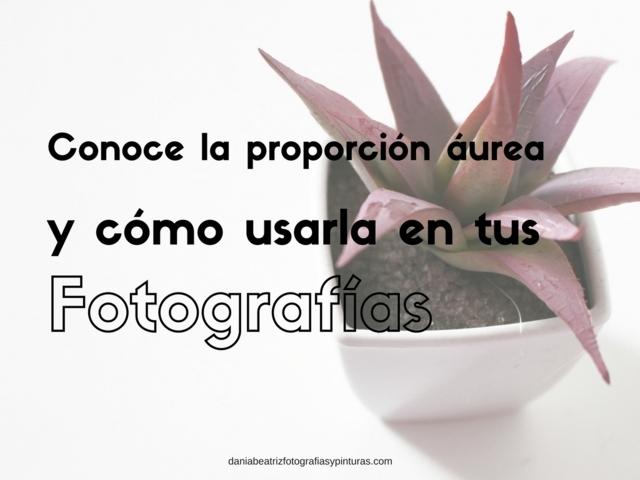proporcion-aurea-en-la-fotografia