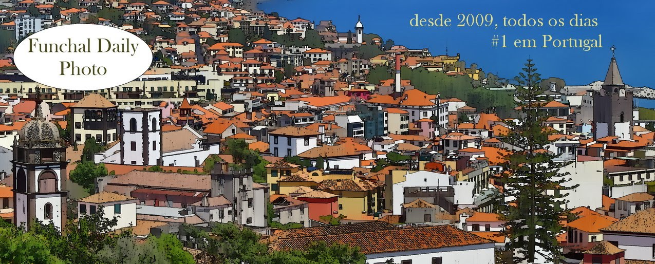 Funchal Daily Photo
