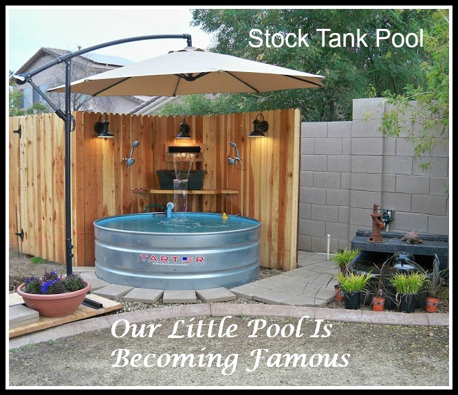 Our Little Pool Is Becoming Famous
