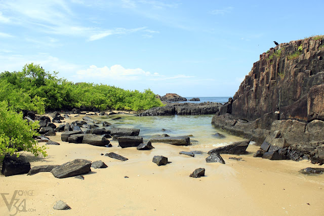 Basalt rock formations at St Mary's Island, Udupi