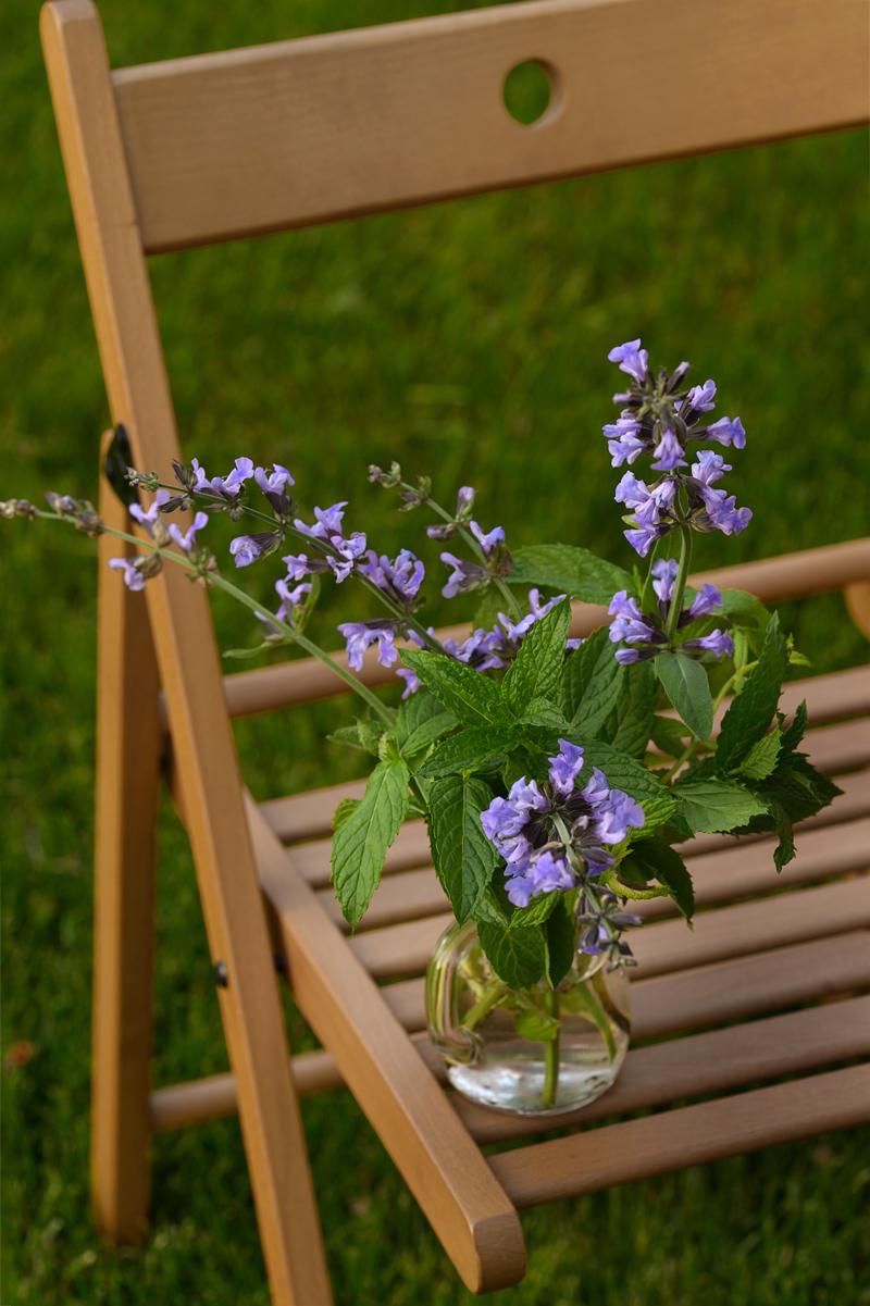 Sage, mint, flowers