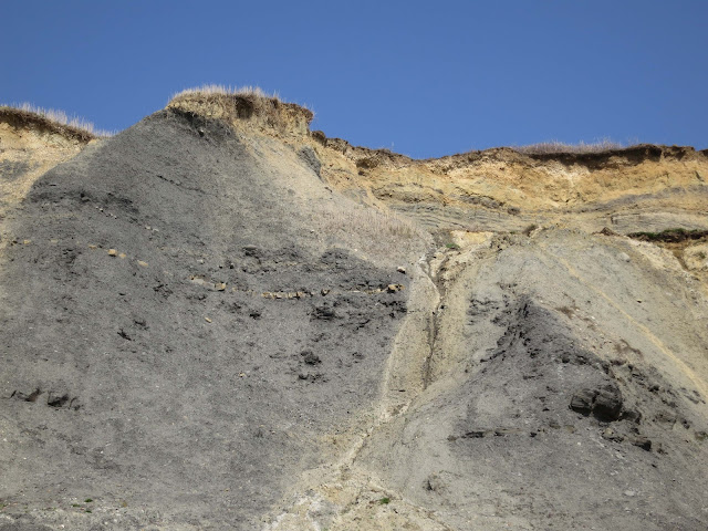 Cliffs at Charmouth in Dorset showing some of the layers laid down through pre-history and the grassy, earthy present.
