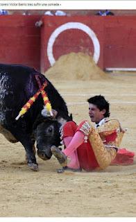 Toureiro tem peito perfurado por touro e morre na Espanha; veja vídeo impressionante