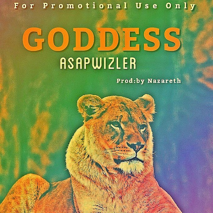 DOWNLOAD MP3: Asapwizler - Goddess