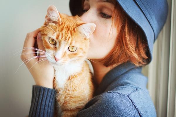 Resultado de imagen para gatos con mujeres