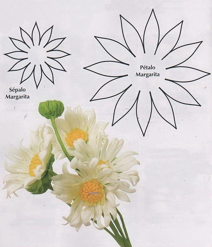 Plantillas Para Hacer Flores Goma Eva