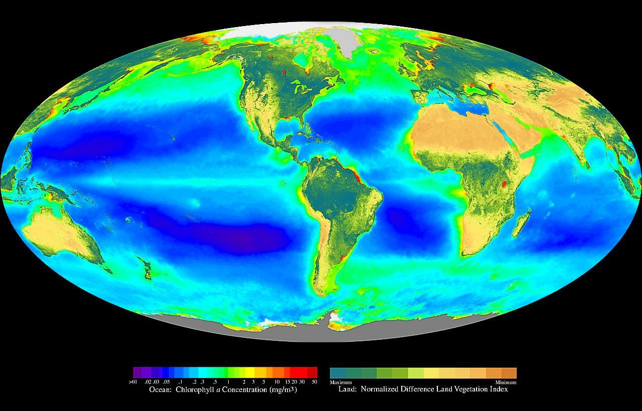 Global distribution of photosynthesis including phytoplankton & vegetation